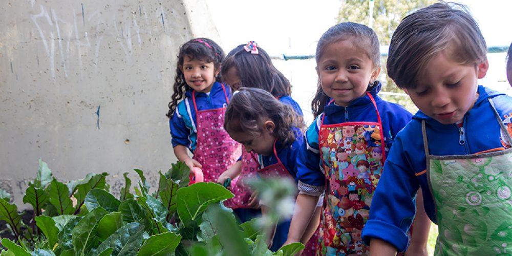 """Ejecución del proyecto """"Adecuación e implementación de huertas urbanas"""" en el Jardín Infantil Loma Linda de la comuna 4 de Altos de Cazucá, Soacha."""